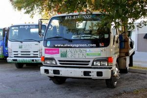 Always Green truck to deliver Tampa Bay Landscape Care