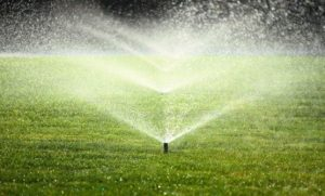 Sprinklers maintained by ATZ Irrigation