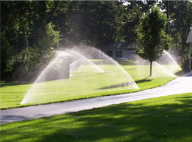 sprinkler system operating