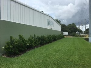 always green central facilities at 401 Douglas Road East Oldsmar, FL 34677
