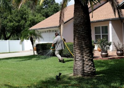 always-green-lawn-care-services-for-health-green-grass