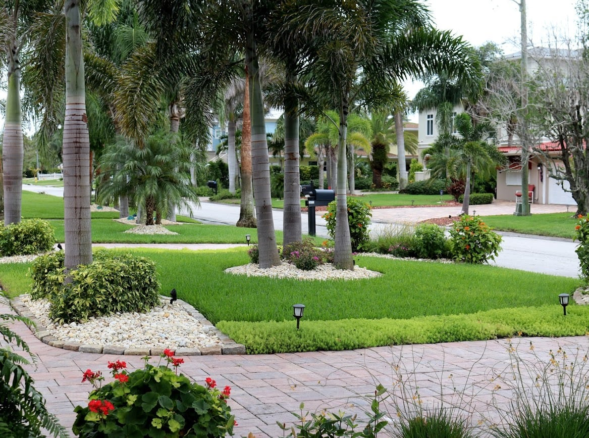 Always Green S Landscape Care Results Always Green